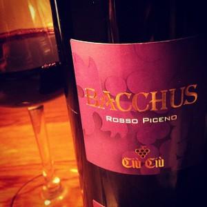 たこ焼きにも合う赤ワイン。『チウ・チウ・ロッソ・ピチェーノ・バッカス 2010』