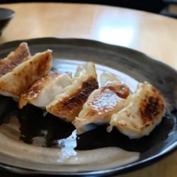 大阪王将の冷凍肉餃子250個を注文してみた