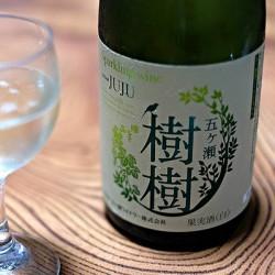 甘めの国産スパークリングワイン「樹樹」を飲んだり、九州の真ん中にある五ヶ瀬ワイナリーの見学をしたり