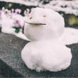 雪だるまsam