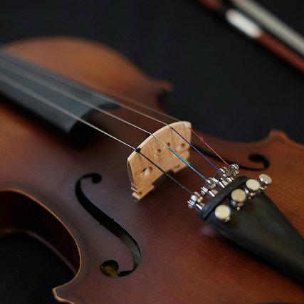 バイオリンを買ってみたけど予想以上の小ささにびっくりした